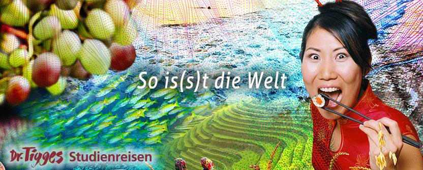 agree, Singles spiel kostenlos downloaden deutsch where can read