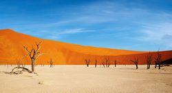 Studiosus - Namibia - Afrika-Feeling