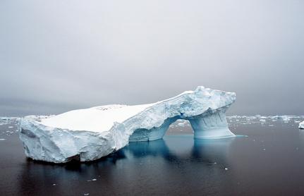 DIAMIR Erlebnisreisen - Basecamp Antarktis