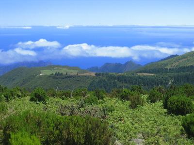 Asi Reisen Madeira Wandern Und Mehr Vom Gruppenerlebnis Zum