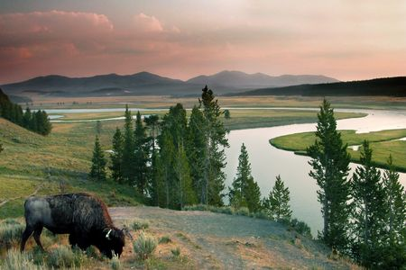 Wikinger Reisen - Wandern zwischen Canyonlands & Yellowstone