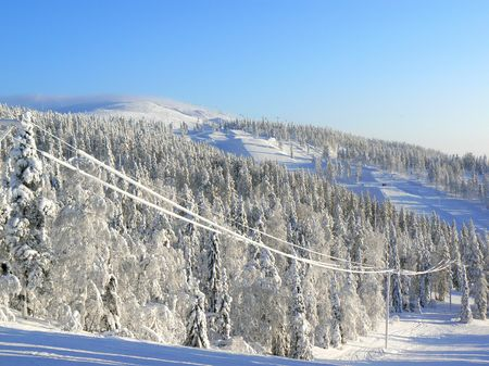 Wikinger Reisen - Wintererlebnis in der letzten Wildnis Europas