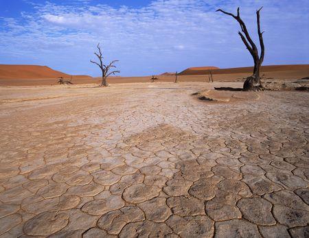 Studiosus - Namibia - im Überblick
