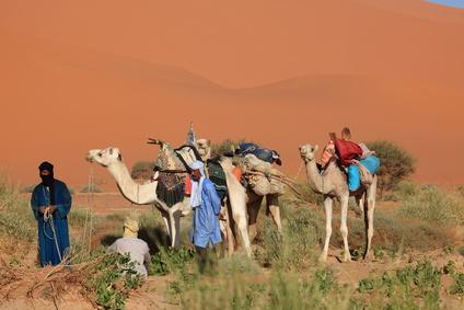 ASI Reisen - Marokko individuell - Djebel Toubkal:Auf dem Dach Nordafrikas