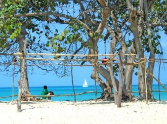 Thomas Cook - H�hepunkte Jamaicas