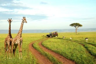 Ikarus Tours - Nationalparks in Kenia und Tanzania