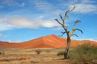 Meiers Weltreisen - Erholen & Entdecken: Faszination Namibia