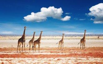 Meiers Weltreisen - Namibias Land & Leute