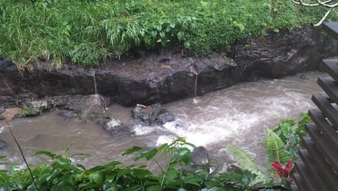 Eindrücke vom Ayung River
